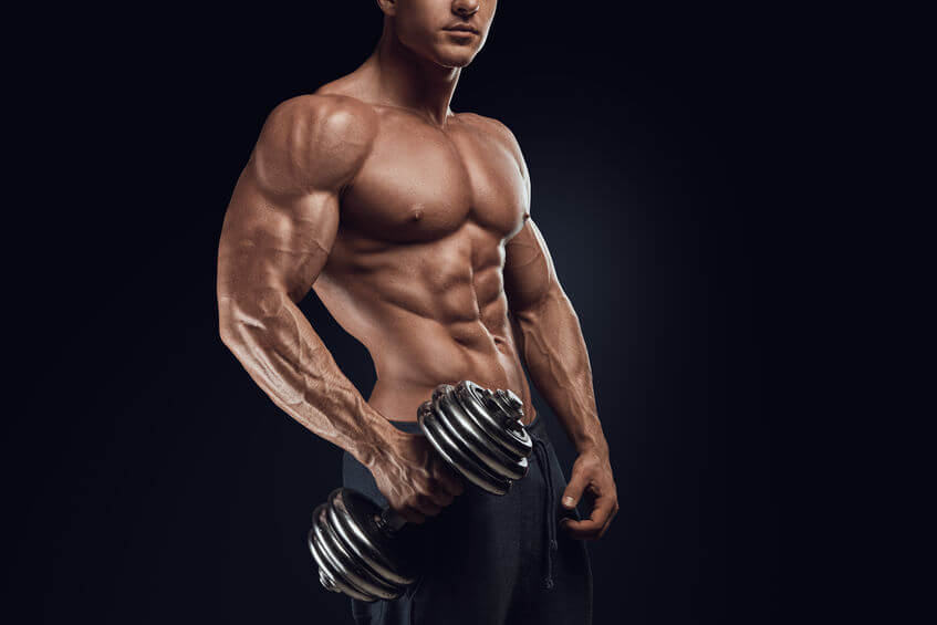 e9fd5200 - Bicep Building Workout The Bicep Building Priority Program